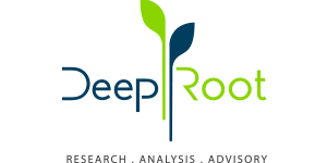 DeepRoot Consulting