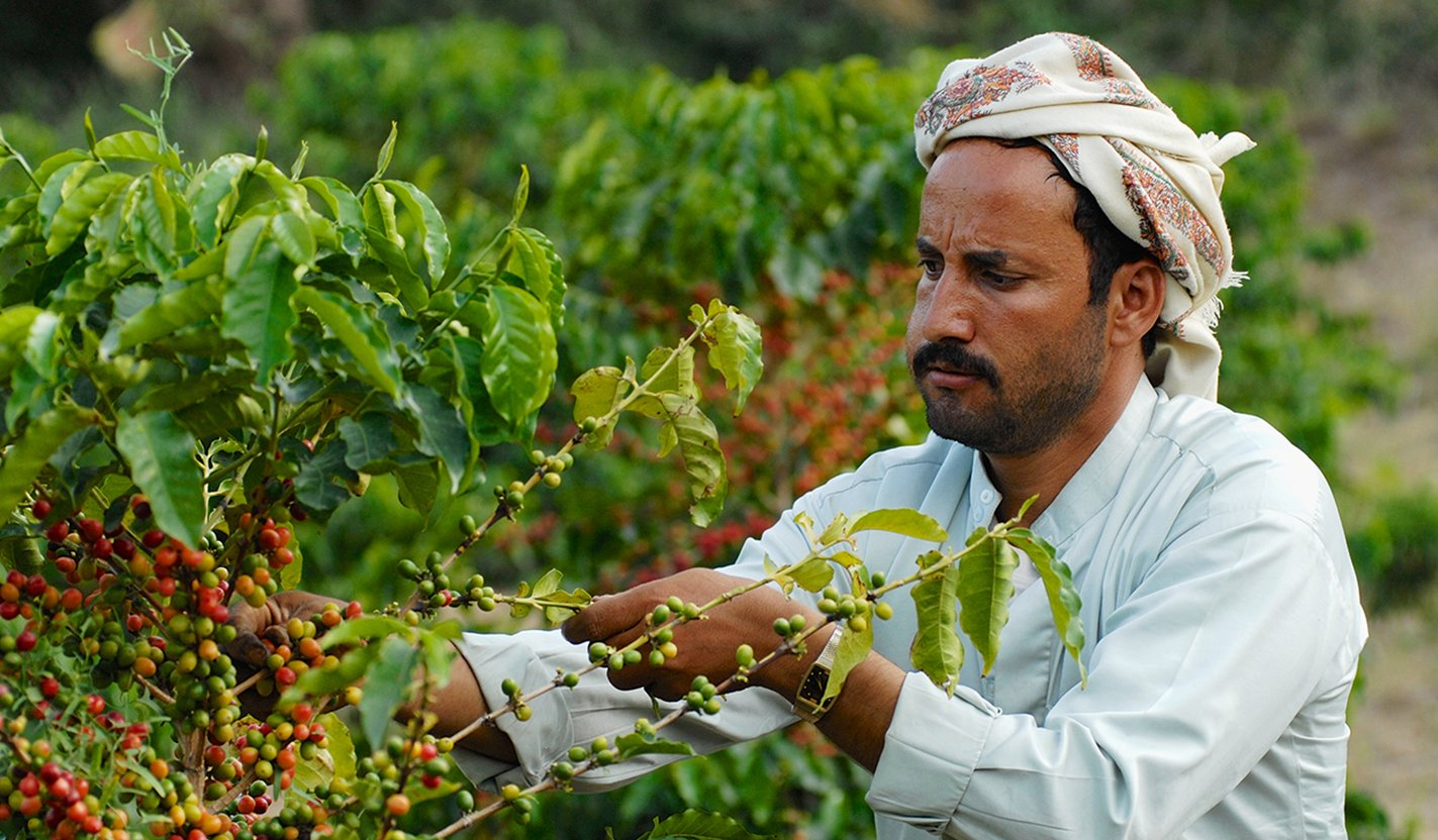 Microfinance in Yemen: An Overview of Challenges and Opportunities