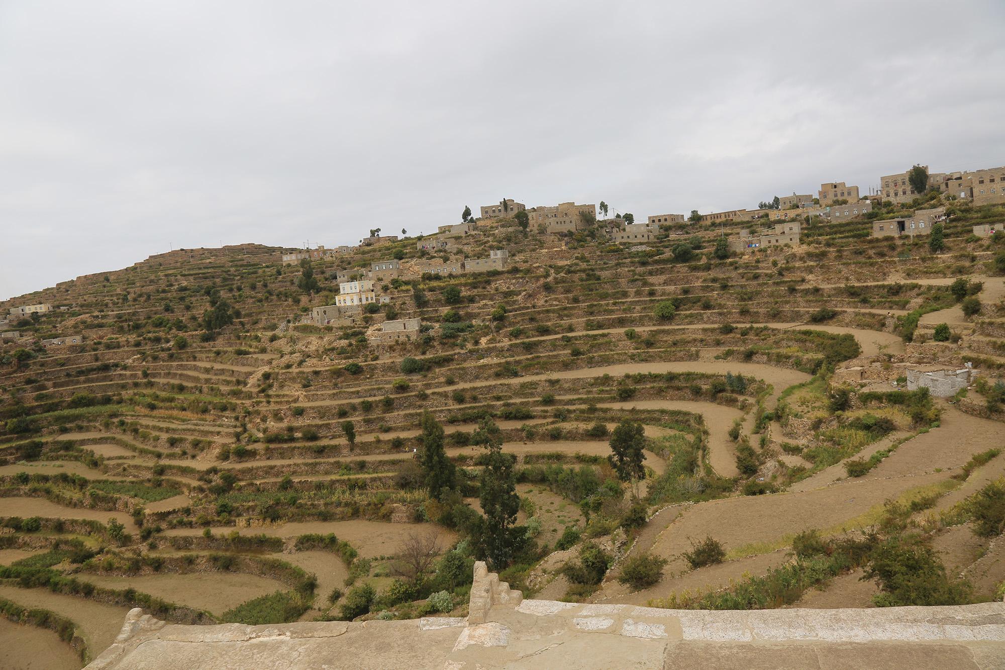 الري بالطاقة الشمسية في اليمن: الفرص والتحديات والسياسات